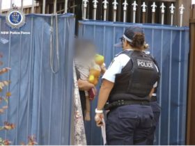 辛苦!防范家暴犯罪 澳警察在上千户家门口庆圣诞