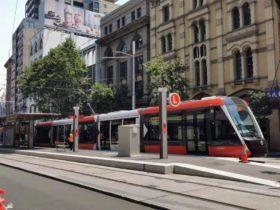 悉尼人一定要当心!253名行人在CBD走路,走着走着悲剧了!