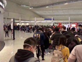"""歧视、停航、拒绝入境…中国游客""""人在囧途"""""""