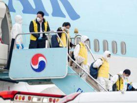过去一周韩国人去哪了?航班数据:飞往中国这俩城市的最多